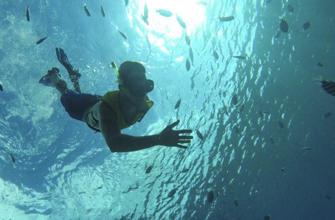 Royal Caribbean's SeaSeekers