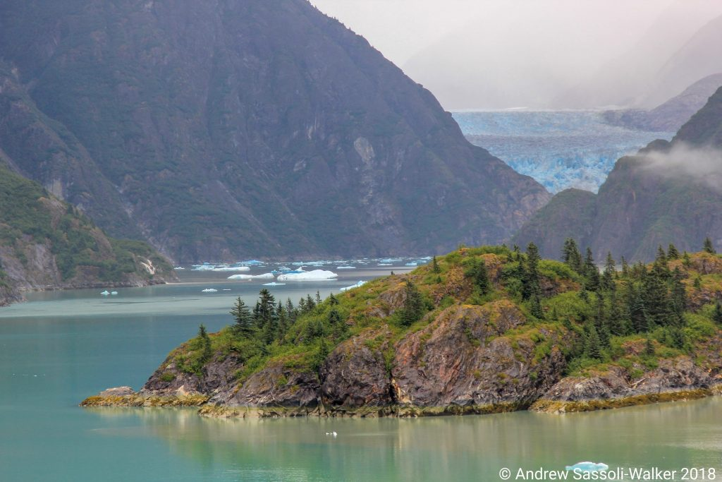 Photo Credit: Andrew Sassoli-Walker - Sailing through the Tracy Arm Fjord