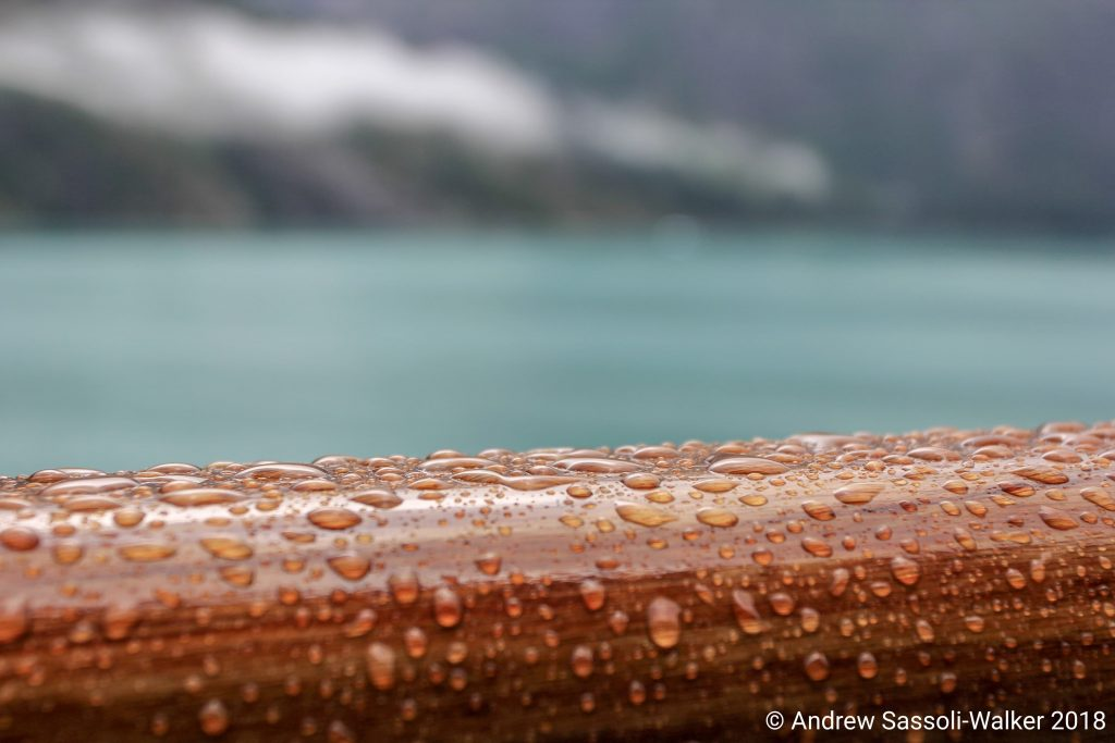 Photo Credit: Andrew Sassoli-Walker - Juneau, Alaska Cruising Alaska with the Sassoli-Walkers Part 3