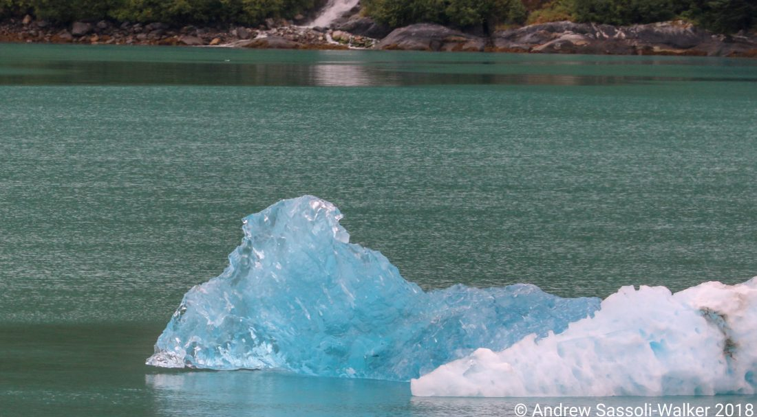 Cruising Alaska With The Sassoli Walkers Part 3 Ships Amp Champagne
