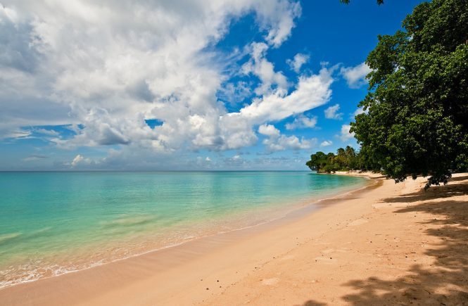 Barbados Embraces Sustainability for a Greener Future